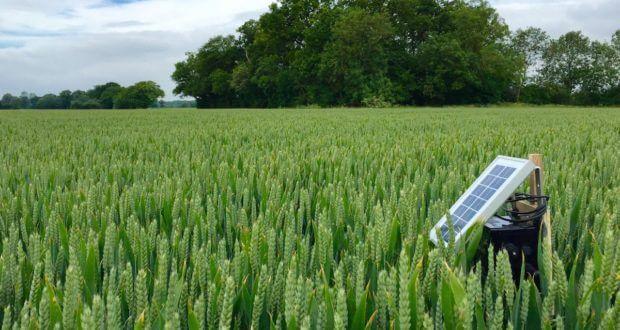 سنسورها در کشاورزی و جنگلداری و بهبود این عرصه
